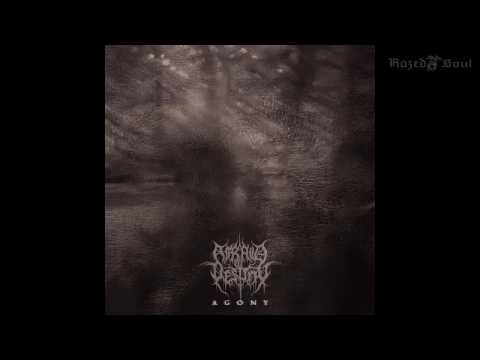 Afraid of Destiny - Agony (Full Album)