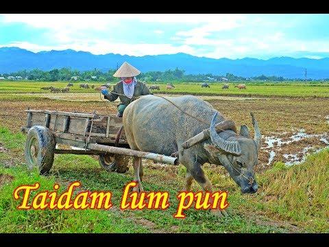 ลุยเวียดนาม(Vietnam) EP31:ไตดำรำพัน(Taidam lum pun) อำลาเมืองเเถง(Dien Bien Phu) ถิ่นบรรพชนไตดำ