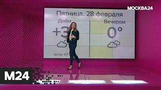 """""""Погода"""": осадки в виде снега ожидаются в столичном регионе - Москва 24"""