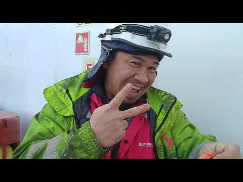 #6 Offshore Life  Hero-hero Kapal.💪💪