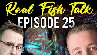 Q&A with the Real Fish Talk Crew Episode 25 thumbnail