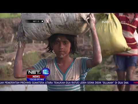 Perjuangan Warga Rohingya Melarikan Diri dari Rakhine - NET 12