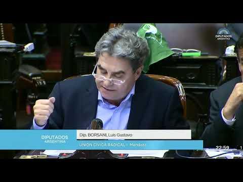 Luis Borsani - Ley de Interrupción Voluntaria del Embarazo