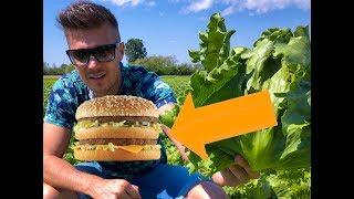 Itt készül a saláta a Big Mac szendvicsekbe