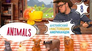 Запутанная песня про животных (Animals) - Английский для детей с Ковбоем и Таратутом - Серия 8