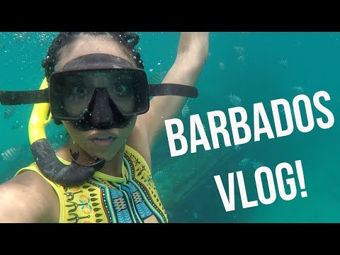 BARBADOS VACATION VLOG 2018 | BiancaReneeToday
