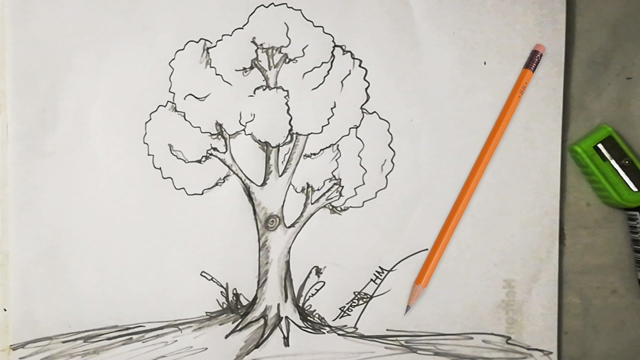 How To Draw Easy And Simple Tree Sketch For Beginners With Pencil Youtube