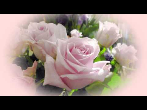 Romantic guitar instrumental music (acoustic guitar solo) - eternal beauty - the wedding song