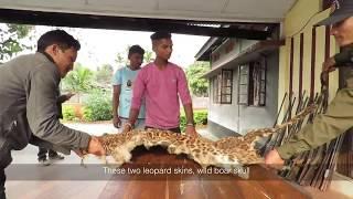 Protecting Paradise - Pakke Tiger Reserve