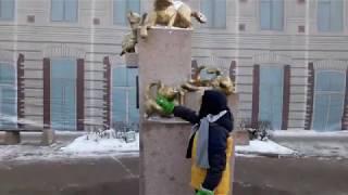 Сибирские кошечки, коты и котята! Центер Тюмени!