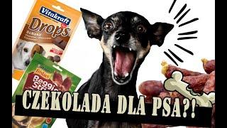 SPRÓBUJ SIE NIE ZAŚMIAĆ  CZEKOLADA dla Psa?! Test smakołyków i przysmaków