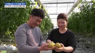 [디지털농업 4.0시대를 연다] 토마토 스마트팜 김대만…