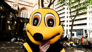 Working bee: Undercover reporter in climate protest 'sting'
