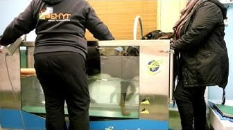 Huru at hydrotherapy, rehab 5 weeks after TTA operation