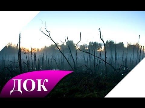 Аномальные зоны Земли: Урочище Шушмор и Медведицкая гряда. Документальный фильм