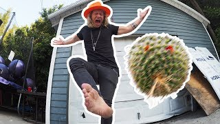 Cactus Hacky Sack! - The Dudesons