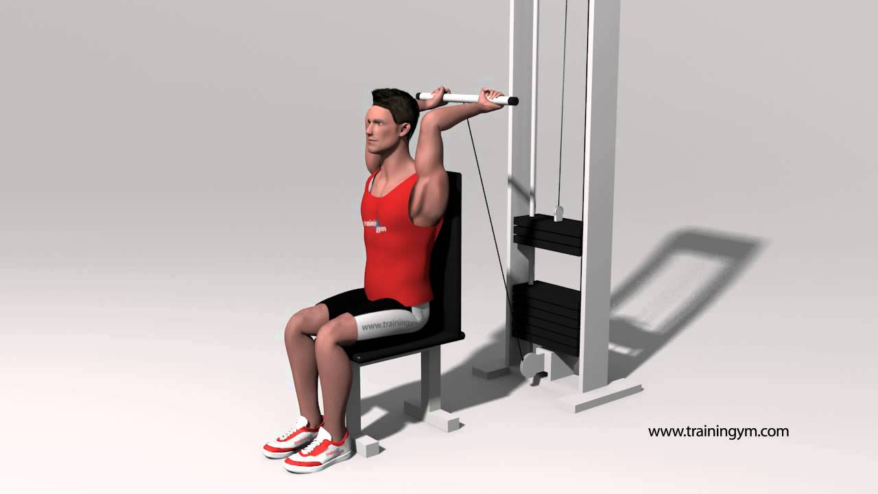 Polea barra triceps extension