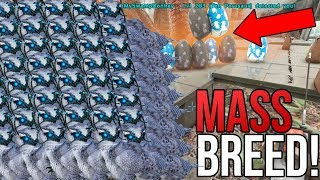 MASS BREEDING GLITCH On Official!!! ARK Official PvP!