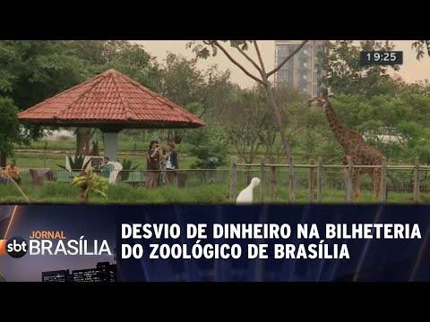 Desvio de dinheiro na bilheteria do Zoológico de Brasília | Jornal SBT Brasília 30/07/2018