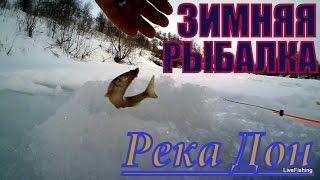 Зимняя рыбалка на реке Дон.(Зимняя рыбалка на реке Дон. В этот раз погода была намного теплее предыдущих рыбалок и не плохо ловилась..., 2016-02-02T16:00:45.000Z)