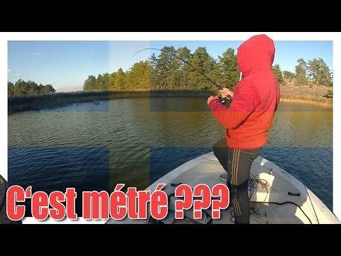 Sweden Fishing Trip day 6 On fait le plus Gros BROCHETS du séjours + debrief