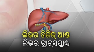 Kalinga Supravat || Liver Disease: Symptoms, Types, Treatment, And Diet || KalingaTV