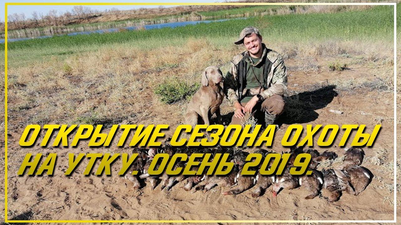 Открытие сезона охоты на утку. Осень 2019. Охота на утку в Казахстане.