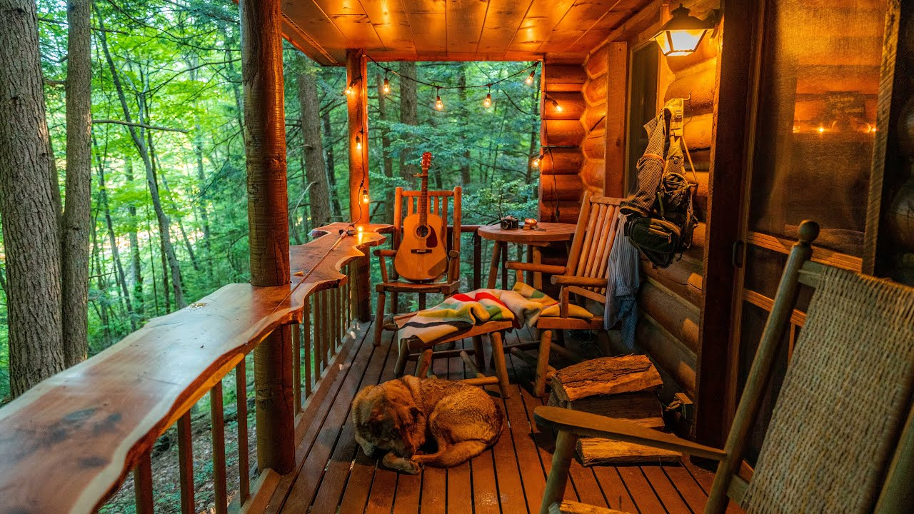 Peaceful Log Cabin Adventure with my Dog - YouTube