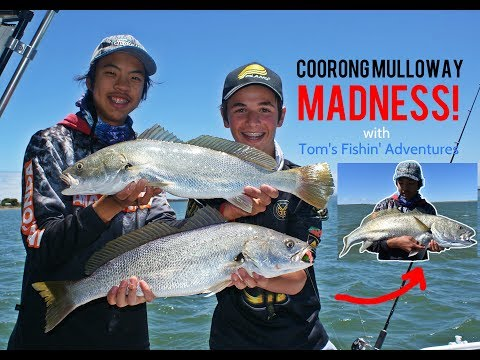 Coorong Mulloway MADNESS! | Chasing The Metre Mulloway