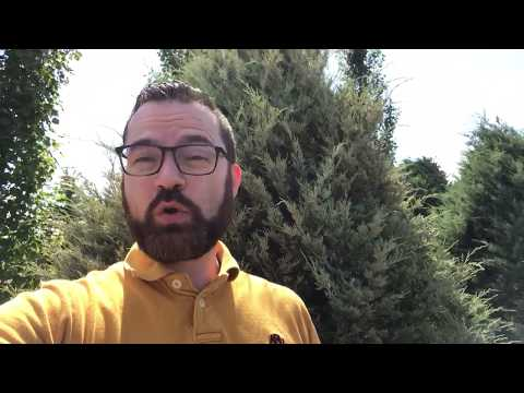 Intro to July 22 message - Jason Frizzell