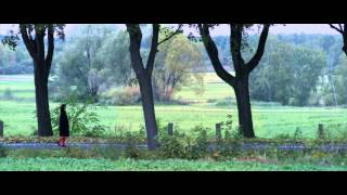 Madsen - Love Is a Killer (Videoclip) ft. Walter Schrefels