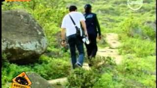 Popular Videos - Pachacamac & Music