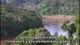 Tambopata Natural Reserve video by Antonio Brack - Peru Amazon Rainforest Hotel - Part II