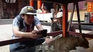 20091201下課花路米追貓人生01.avi
