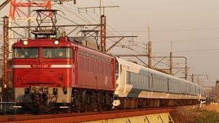【配給輸送】 EF81-140+E257系9両 岡部~本庄通過