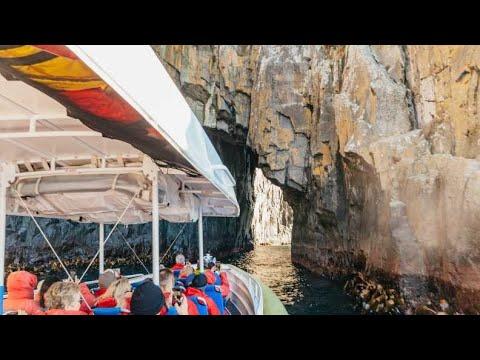 Bruny Island Wilderness Tour Tasmania
