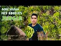 Video de San Miguel Panixtlahuaca