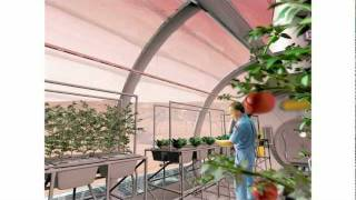 Бритта Райли: огород в моей квартире