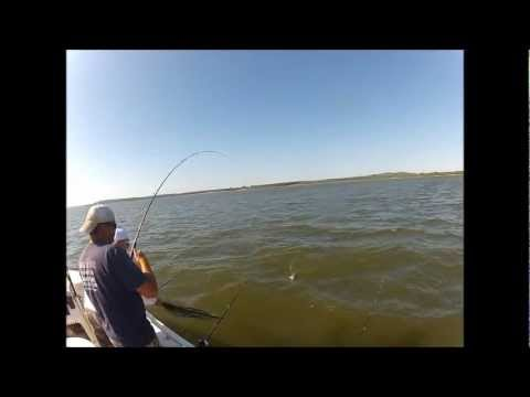 Fishing Lake Eufaula for catfish from YouTube · Duration:  4 minutes 3 seconds  · 4,000+ views · uploaded on 7/20/2012 · uploaded by Shawn Morales