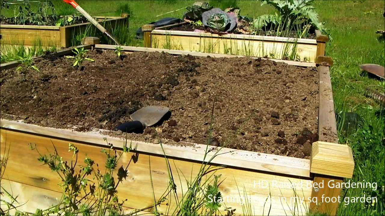 HD Aquaponics - Raised garden beds, starting seeds in my square foot ...