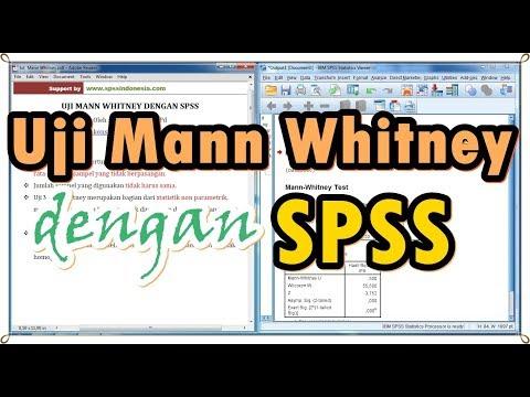 Video Panduan SPSS : Cara uji independent sample t test atau uji t dua sampel tidak berpasangan deng.