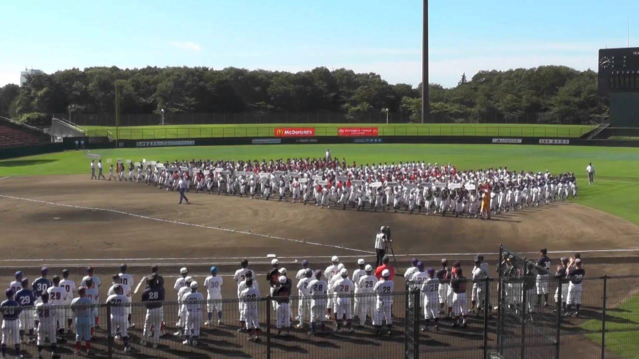2014年 高円宮賜杯全日本学童軟...