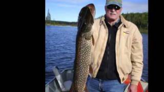 Black Bear Island Lodge Fishing 2010