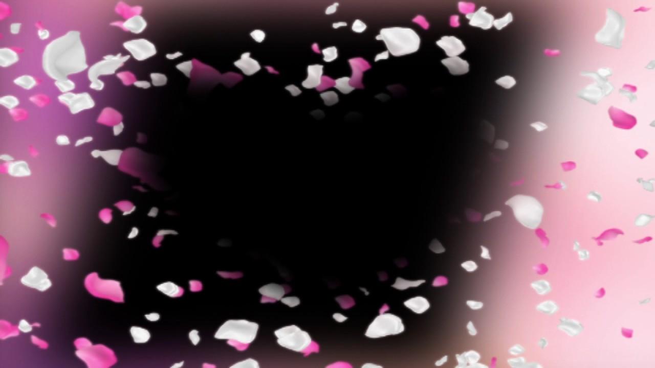 Футаж Рамка лепестки роз