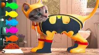 Fun Pet Care Game - Little Kitten Adventures - Play Fun Costume Dress-Up Party Mini Games For Kids