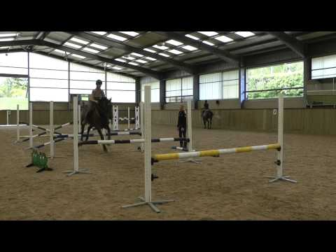 Vittoria Panizzon Advanced group show jump training