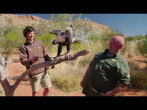 WUDU S08E17: The Alice Springs Desert Park