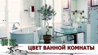 Какого цвета ванная комната?