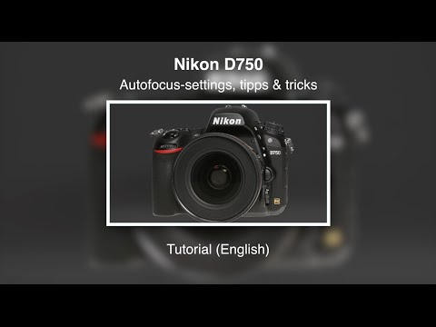 Nikon D750 – Autofocus-Settings – Tips & Tricks – Tutorial (English)