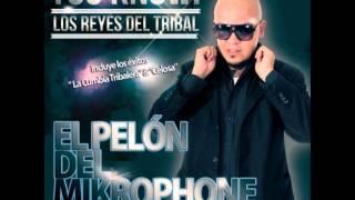 La cumbia tribalera - El Pelón del Mikrophone